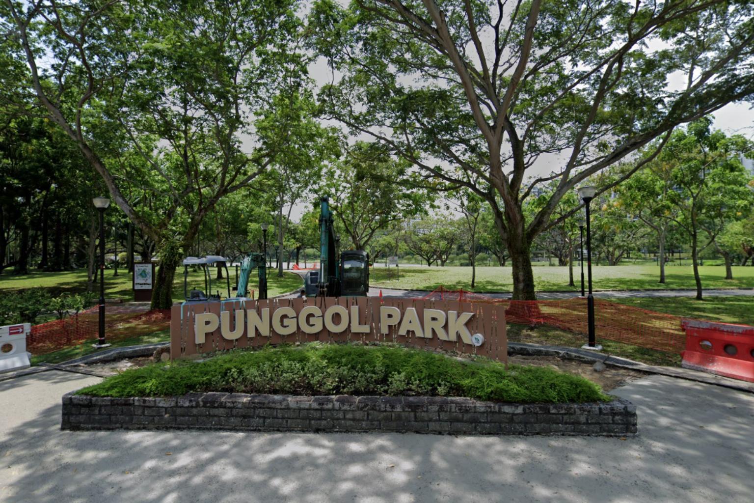 Punggol Park